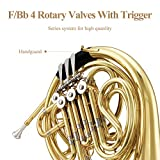 Eastar Double French Horn Key of F/Bb Intermediate