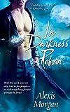 In Darkness Reborn (Paladins of Darkness)