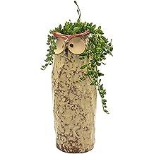"GeLive 9"" Tall Owl Ceramic Succulent Planter, Fun Animal Plant Pot, Home Decorative Ikebana Bud Vase, Artificial Flower Arrangement, Hydroponics Container, No Hole"