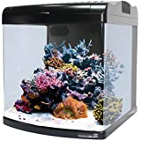 JBJ Nano Cube DX Aquarium, 12-Gallon