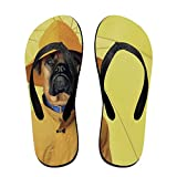 Unisex Adullt Flip Flops Sandal Slipper Home Flats Open Toed Slide Shoes Hat Dog Medium