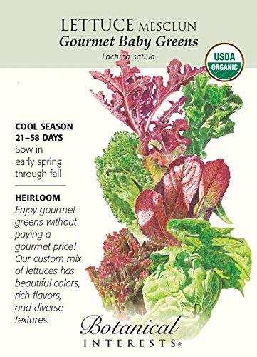 Gourmet Certified Organic Heirloom Seeds 1200 Seeds (Mesclun Mix Seeds)