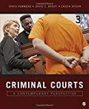 Criminal Courts 3rd Edition