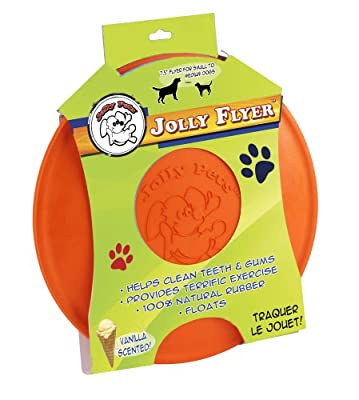 Jolly Pets Jolly Flyer Rubber Floating Disc by Jolly Pet