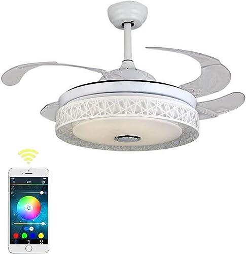 KALRI Modern Ceiling Fan