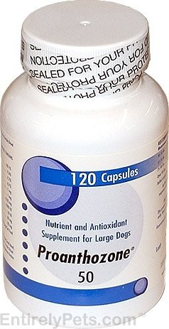 Proanthozone 50mg for Large Dogs (120 Caps) by Virbac