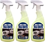 Simply Spray 3 x 750ml Professional H...
