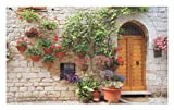 Lunarable Tuscan Doormat, Begonia Blossoms in Box Window Wooden Shutters Brick Wall Romagna Italy, Decorative Polyester Floor Mat Non-Skid Backing, 30 W X 18 L inches, Orange White Green