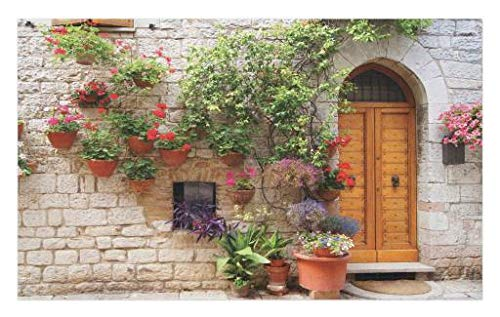 Lunarable Tuscan Doormat, Begonia Blossoms in Box Window Wooden Shutters Brick Wall Romagna Italy, Decorative Polyester Floor Mat with Non-Skid Backing, 30 W X 18 L Inches, Orange White