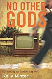 img - for No Other gods: Confronting Our Modern Day Idols book / textbook / text book