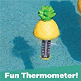 GAME 13936-BB Pineapple Pool and Spa Thermometer