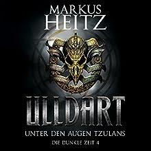 Unter den Augen Tzulans (Ulldart: Die Dunkle Zeit 4) Hörbuch von Markus Heitz Gesprochen von: Johannes Steck
