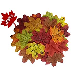 Artificial Maple Leaves Decorations - Thanksgiving Fall Autumn Tropical Leaf - Wedding Party Table Decor Photography Background(200Pcs, 7Multicolor) 12