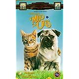 Adventures of Milo & Otis [Import]