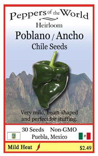 Poblano Pepper - 10 Seeds - Authentic Chile Rellenos - Ancho When Dry - Easy to Grow