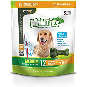 Amazon.com : Minties Dental Dog Treats (40 ct.) : Pet Supplies
