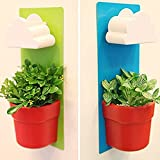 2 Pack- Hanging Planters Plastic Creative Clouds Rainy Pot Wall-hung Flower Pot