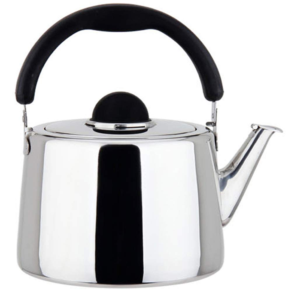 Stainless Steel Kettle Silver Tea Kettle with Whistle Sound, 3L,4.5L,5L,10L by HLLXX
