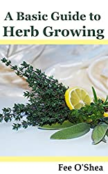 A Basic Guide to Herb Growing