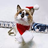 Enjoying Cat Dog Christmas Hat - Cat Dog Costume Hat with Santa Scarf Cloak for Kitty Cats Small dogs , Red