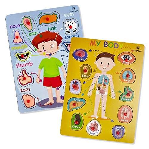 Educational Peg - Gleeporte Wooden Peg Puzzle, My Body - Inside & Outside Parts - Pack of 2 Learning Educational Pegged Puzzle Boards for Toddler & Kids - (Set of 2)