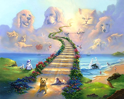 (16x20 11x14 or 8x10 Rainbow Bridge All Pets Go Stairway to Heaven Art Print Sympathy Memorial Dogs Cats (16x20))