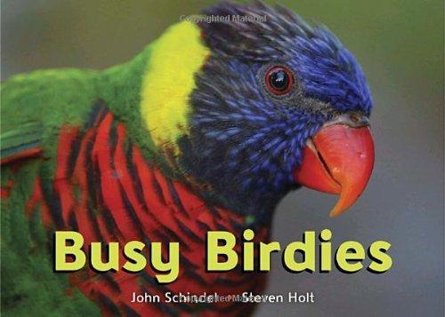 Read Online Busy Birdies (A Busy Book) ebook