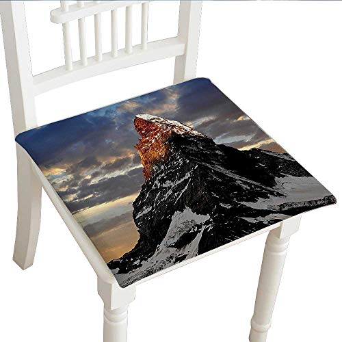 Classic Decorative Chair pad (20