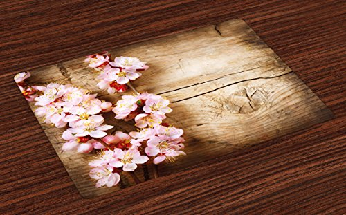Ambesonne Floral Place Mats Set of 4, Spring Blossom Orchard Featured Plant on Wooden Board Background Image, Washable Fabric Placemats for Dining Room Kitchen Table Decor, Sand Brown Pale Pink
