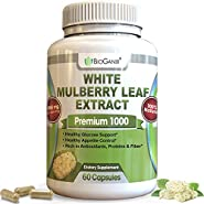 Pure White Mulberry Leaf Extract Premium 1000mg (No Fillers) Natural High & Low Blood Sugar Control & Weight Loss Support - Sugar Cravings & Crash Control (60 Veggie Capsules)