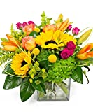#9: Sunnyside Up by Breen's Florist Houston - Summer Flowers Hand Delivered