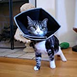 All Four Paws Comfy Cone for cats- small