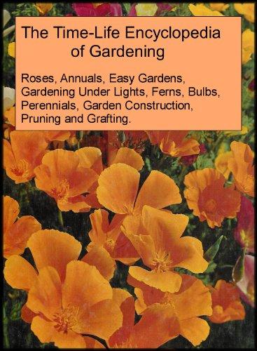 Vegetable Gardening Under Lights