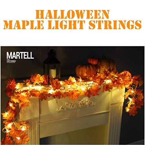 15 Led Halloween Pumpkin String Lights in US - 7