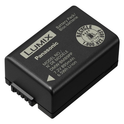 Panasonic Lithium-Ion Battery DMW-BMB9 for Lumix Cameras FZ100K FZ40K FZ80 FZ70