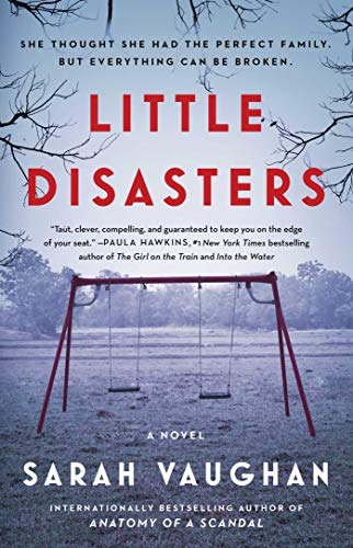 Book Cover: Little Disasters: A Novel