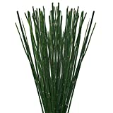 Farm Fresh Natural Horsetail - Pack 200