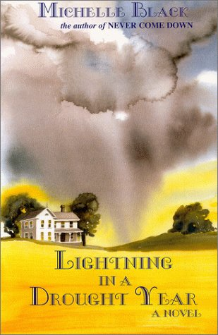 book cover of Lightning in a Drought Year
