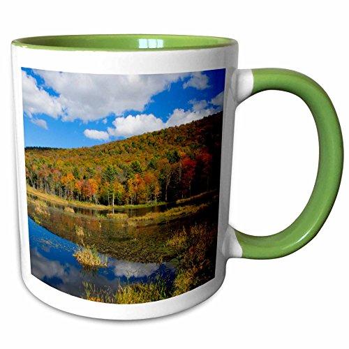 3dRose Danita Delimont - Lakes - USA, Vermont, Burlington, Jericho. Lake with autumn foliage. - 15oz Two-Tone Green Mug (mug_206611_12)