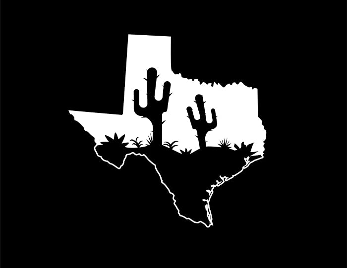 Top 10 Home Texas Decal
