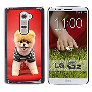 - PET CUTE RED CANINE FUNNY DOG PUPPY - - Monedero pared Design Premium cuero del tir???¡¯???€????€?????n magn???¡¯&Atil
