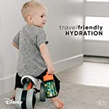Simple Modern Kids Water Bottle with Straw or Sippy