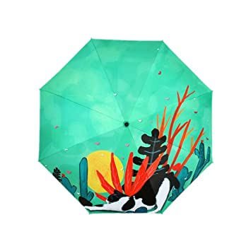 Paraguas Plegables Paraguas Paraguas de Plástico Negro ...