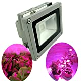 GLW Led Grow Light 10 Watt 12v Ac/dc, Waterproof Flood Lights Fixture for Plant Hydroponic Garden Greenhouse Red Blue 9 Leds