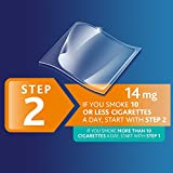 NicoDerm CQ Step 2 Nicotine Patches to Quit Smoking - Stop Smoking Aid, 14 Count