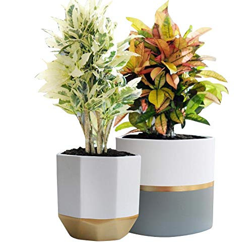 White Ceramic Flower Pot Garden Planters 6.5