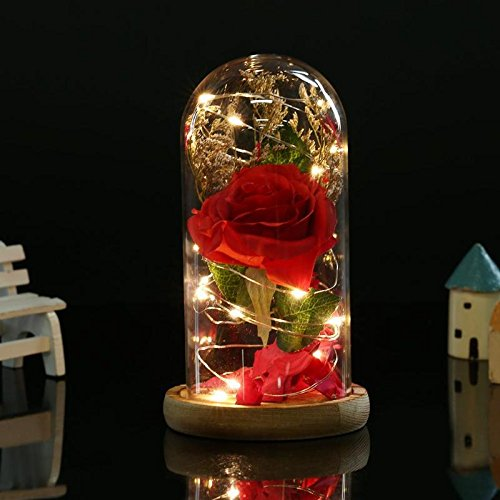 - Star-Five-Store - Birthday Gift Beauty and the Beast Red Rose w/Fallen Petals in a Glass Dome on a Wooden Base for Christmas Valentine's Gifts