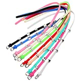 Young & Forever Boy's You-Cool CollectionTrendy Candy Neon Color's Multi-Element Silicon Bracelets
