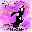 What The Cat Dragged In: Celtic Witch Mysteries Series, Book 1 Audiobook by Molly Milligan Narrated by Gemma Dawson