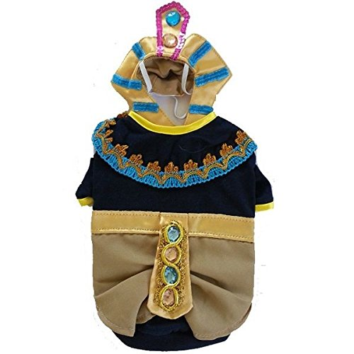 Costume Features Detailed Embroidery with Bejeweled Belt and Hood
